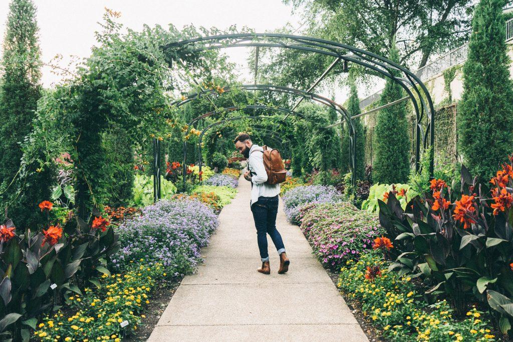 Man in a garden
